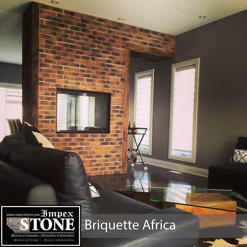 FOYER BRIQUETTE AFRICA